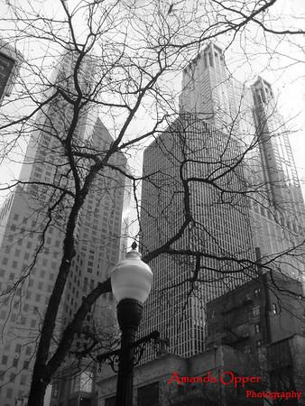 Illinois Photography